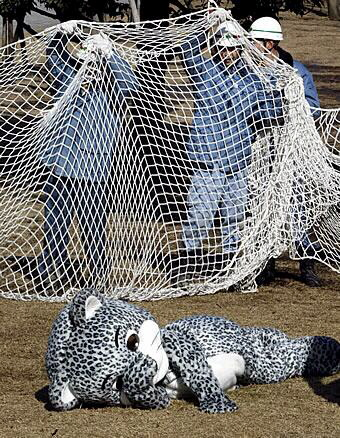 Fursuiter being netted.